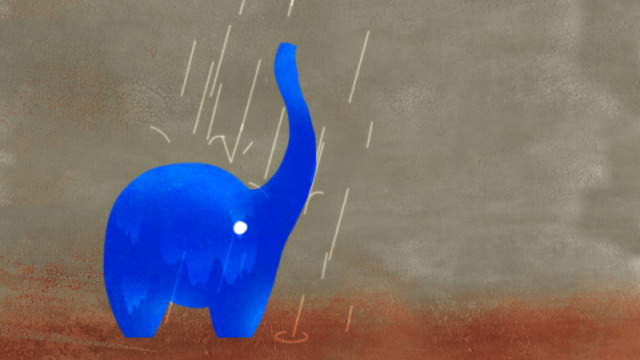 Cravo elephant 00058