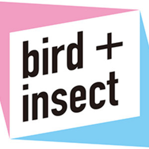 birdandinsect